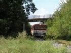 Os 3115 pred viaduktom v smere na Starú Turú